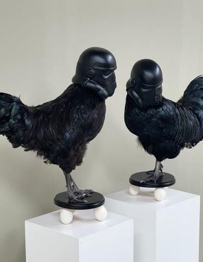 Prequel by Pieter Huijben Starwars chicken rooster - darth feather